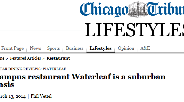 A long time fan of Waterleaf…(Closed)