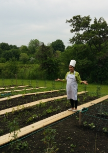 Chef Suzy in the Employee Organic Garden
