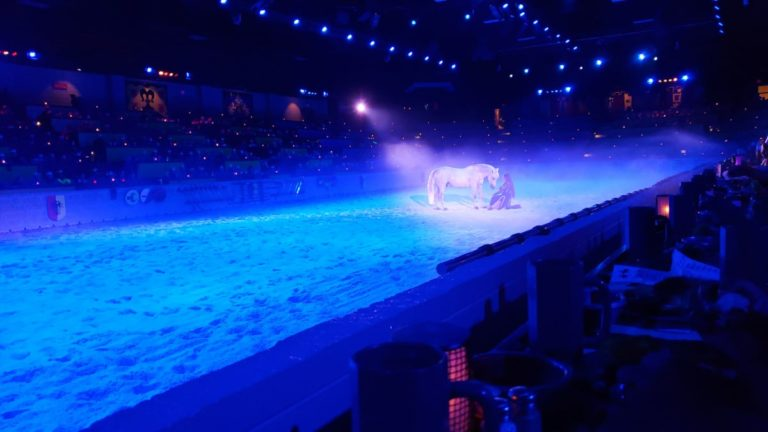 Medieval Times Chicago Arena